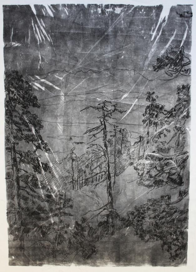"""Walchensee"""", Druckfarbe auf Kunststoffvlies, 160 x 100 cm, 2019 © Gunther Grabe"""