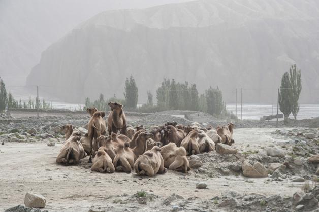 Auf dem Karakoram Highway
